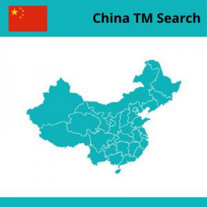 6. China TM Searching